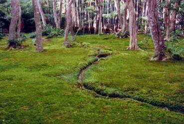 Japonismus art de vivre japonais les japonais et la nature - Jardin japonais mousse ...